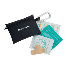 Purse First Aid Kit